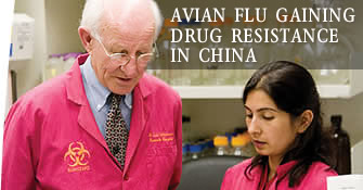 Avian flu gaining drug resistance in China