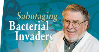 Sabotaging Bacterial Invaders
