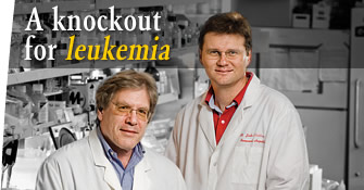 A knockout for leukemia